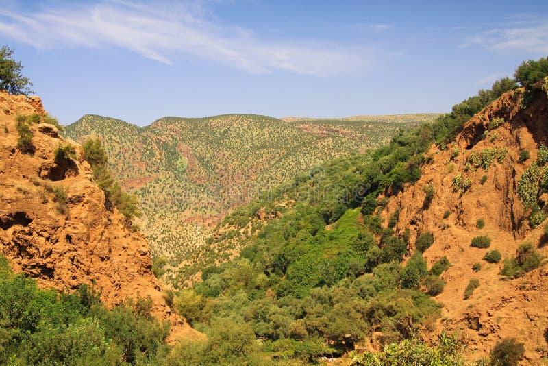 Panorama in rode Ourika-vallei met rode bergen en groene installaties - Marokko stock afbeeldingen