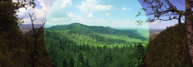 Panorama romania fotografia de stock royalty free