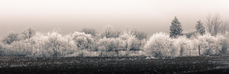 Panorama rurale di inverno fotografia stock