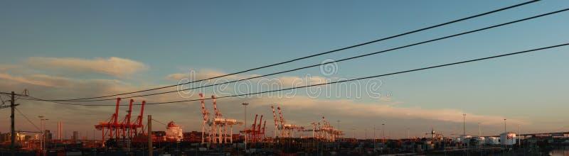 panorama's van lange haven verschepende kranen die lange lading bevinden zich een schip in haven met verschepende containers bij  royalty-vrije stock afbeelding
