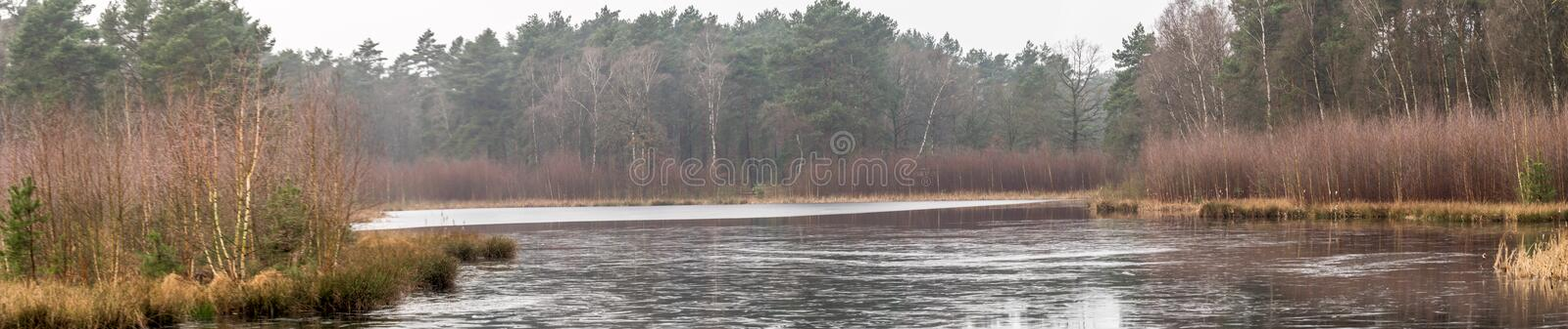 Panorama from the shore of a pond covered with ice, with trees and bushes in the background, a lot of space and width as header fo stock photography