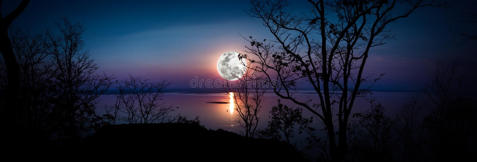 Panorama. Silhouettes of woods and beautiful moonrise, bright full moon would make a great picture. Outdoors. royalty free stock photography