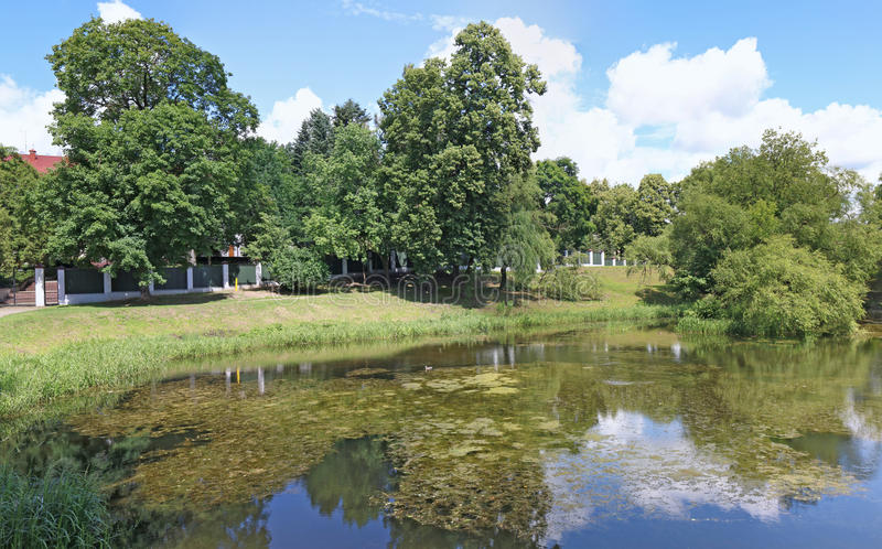 Panorama of a small city pond with still water. royalty free stock photography