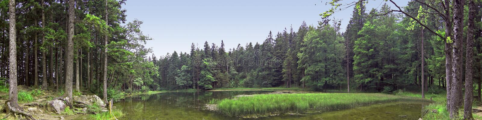 Panorama of a small lake stock photo