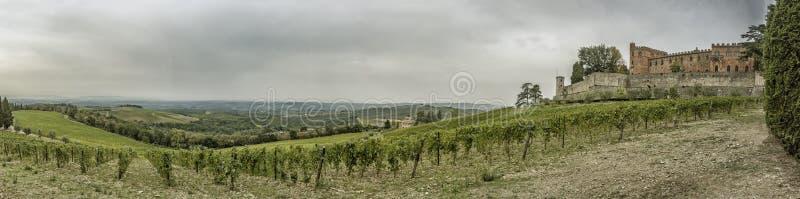 Panorama sobre os montes com vinhedos e o castelo Brolio em Tusc fotos de stock