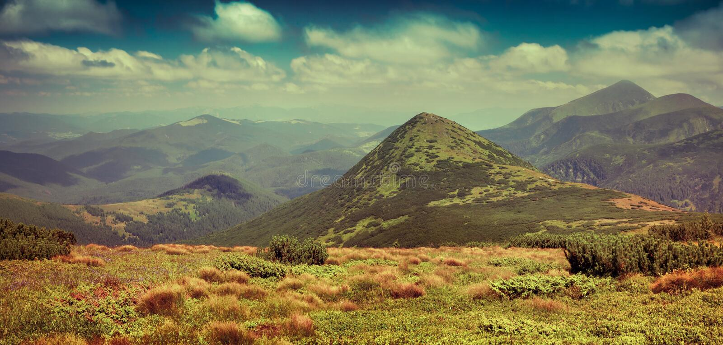 Panorama soleado del verano de montañas cárpatas foto de archivo libre de regalías