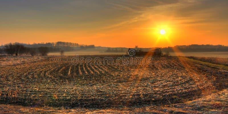 Panorama- soluppgång i fälten royaltyfria bilder