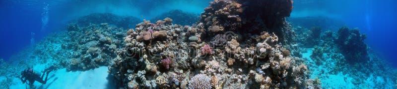 Panorama sous-marin photographie stock