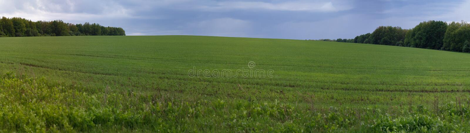 Panorama of the spring meadow with storm clouds stock photography