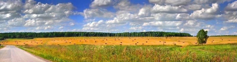panorama- stack för fält arkivbilder