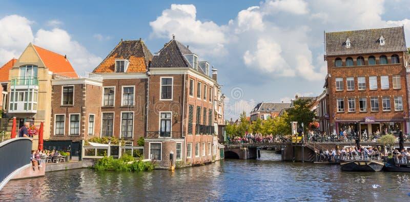 Panorama starzy domy przy środkowymi kanałami Leiden zdjęcie royalty free