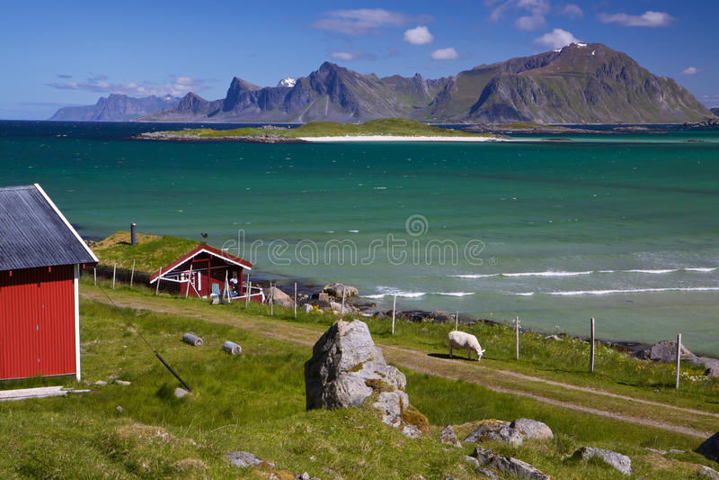 Panorama su Lofoten fotografie stock libere da diritti