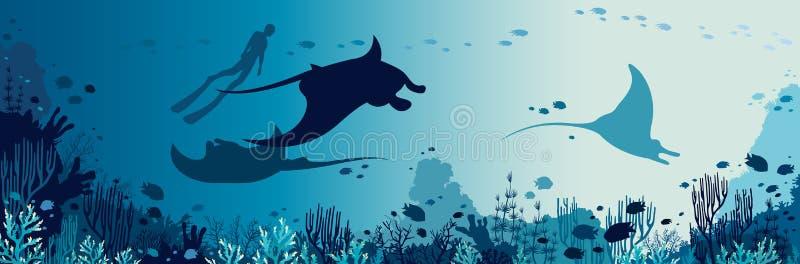 Panorama subaquático - mantas, freediver, recife de corais, peixe, mar ilustração do vetor