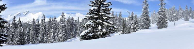 Panorama suisse 1 d'alpes image libre de droits