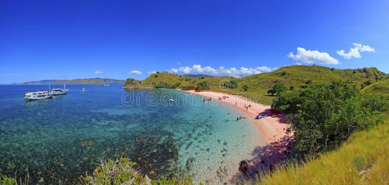 Panorama Superlarge della spiaggia rosa, isola del Flores fotografia stock