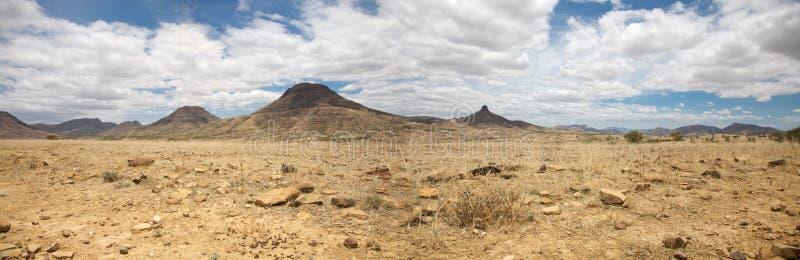 Panorama surrealista de la reserva del juego de Kaokoland en Namibia fotos de archivo libres de regalías