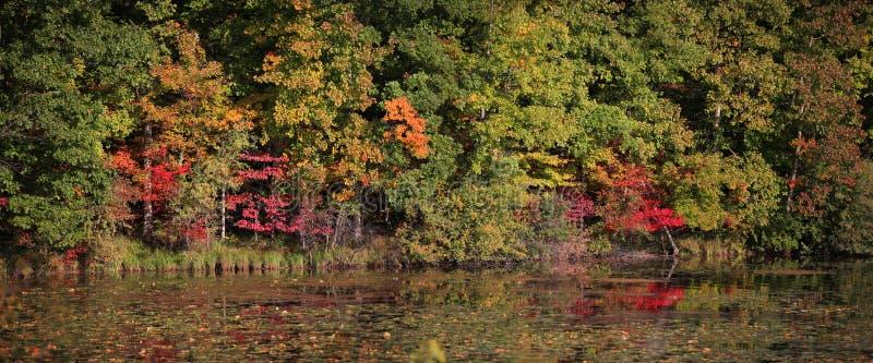 Panorama temprano del otoño imagen de archivo