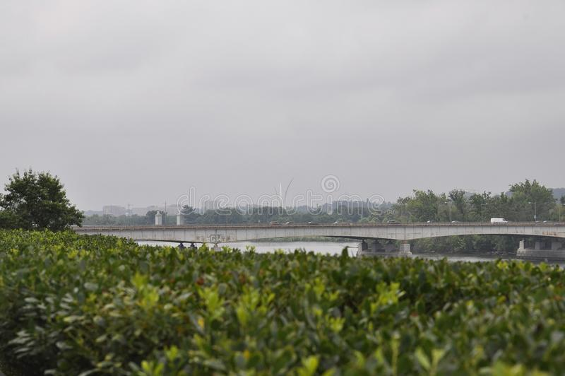 Panorama with Theodore Roosevelt Bridge from Washington District of Columbia USA stock photos