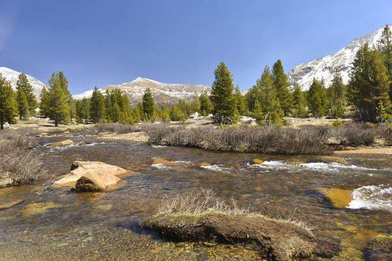Panorama Tolumne Meadows, Yosemite National Park, California royalty free stock photography