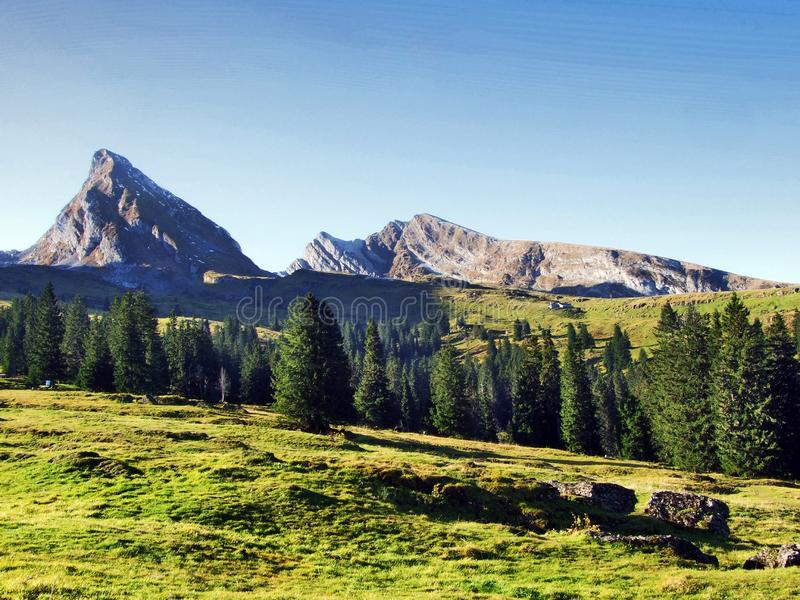 Panorama towards the Alpine peaks Frumsel and Selun in the Churfirsten mountain chain. Cantons of St. Gallen, Switzerland stock photo