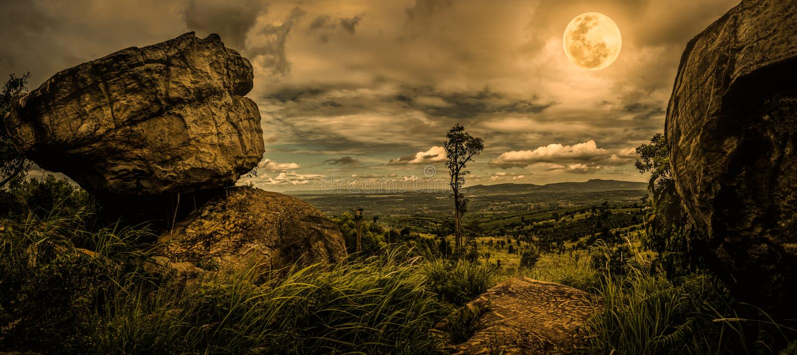 Panorama of tree and boulders against nighttime sky with cloudy. royalty free stock photography