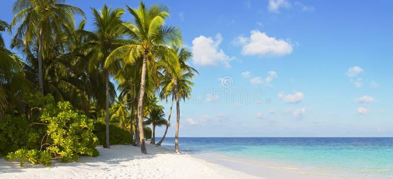 Panorama tropical hermoso fotografía de archivo libre de regalías