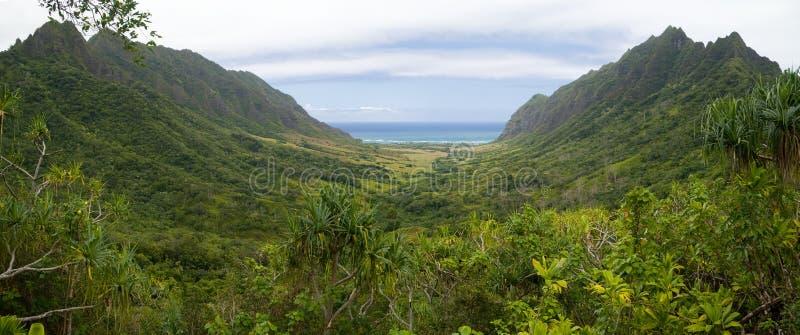 Panorama tropicale della valle fotografia stock libera da diritti