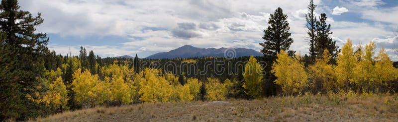 panorama upadek zdjęcie stock