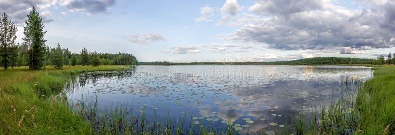 Panorama van bos, meer en moeras stock afbeeldingen
