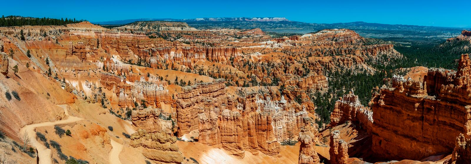 Panorama van Bryce Canyon National Park From Rim Trail stock afbeelding
