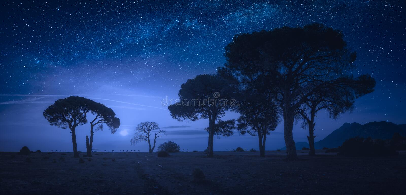 Panorama van Cirali-strand bij nacht stock foto