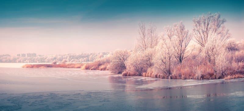 Panorama van de bevroren vijver royalty-vrije stock afbeeldingen