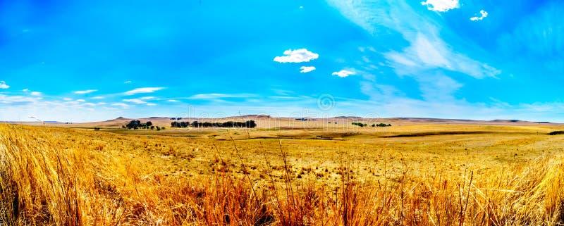 Panorama van de brede open landbouwgrond en de verre bergen langs N3 tussen Hoofd en Villiers in de Vrije provincie van de Staat royalty-vrije stock fotografie