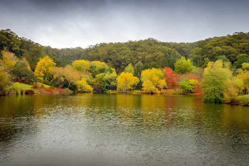 Panorama van de herfstbomen rond de vijver stock fotografie