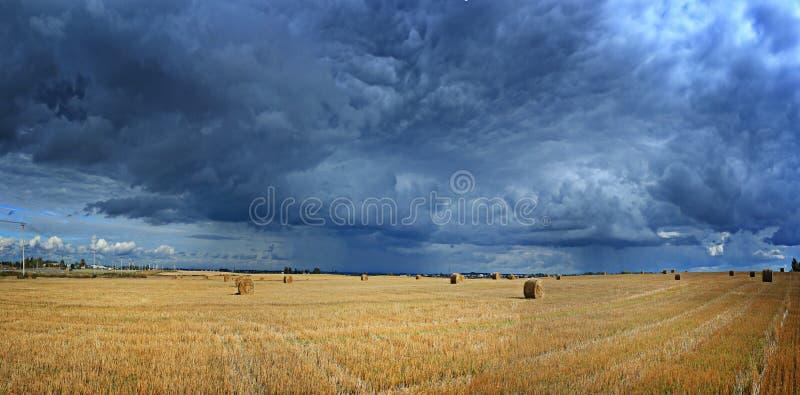 Panorama van de herfstlandschap stock foto's