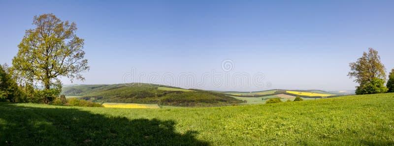 Panorama van de lenteplatteland met groene weide en fores stock afbeelding