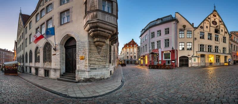 Panorama van de Oude Stad van Tallinn in de Ochtend, Tallinn stock foto's
