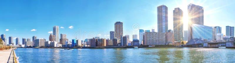 Panorama van de rivier van de wintersumida onder blauwe hemel in wi van Tokyo stock foto