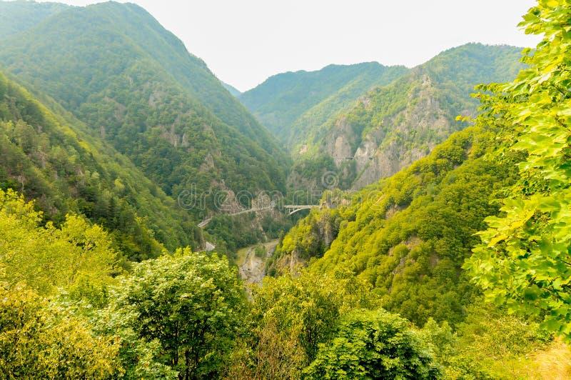 Panorama van de Roemeense bergen stock fotografie