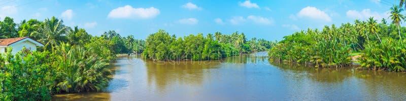 Panorama van de tropische rivier royalty-vrije stock afbeeldingen