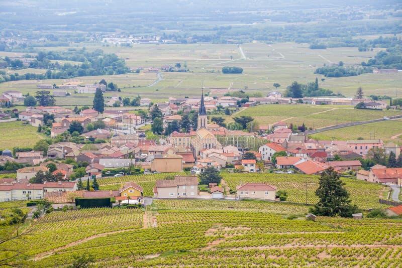 Panorama van de wijngaarden die het schilderachtige Franse dorp van Fleurie omringen stock fotografie