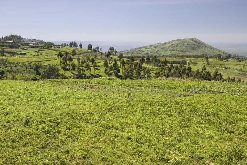 Panorama van Groot Rift Valley in de lente na veel regenval, Kenia, Afrika royalty-vrije stock afbeelding