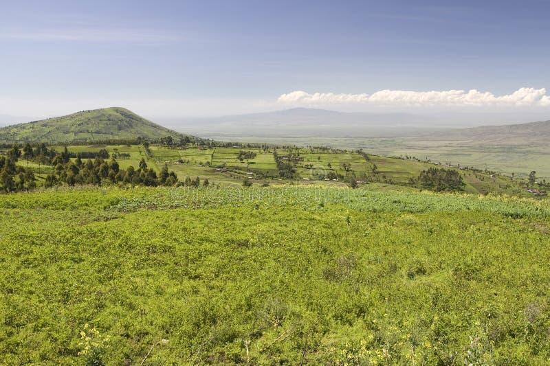 Panorama van Groot Rift Valley in de lente na veel regenval, Kenia, Afrika royalty-vrije stock fotografie