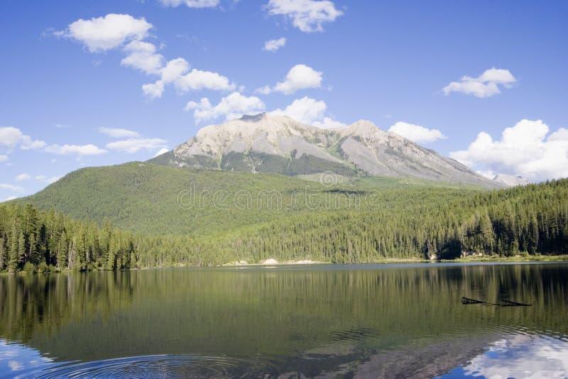 Panorama van het charmante Meer Alces royalty-vrije stock foto