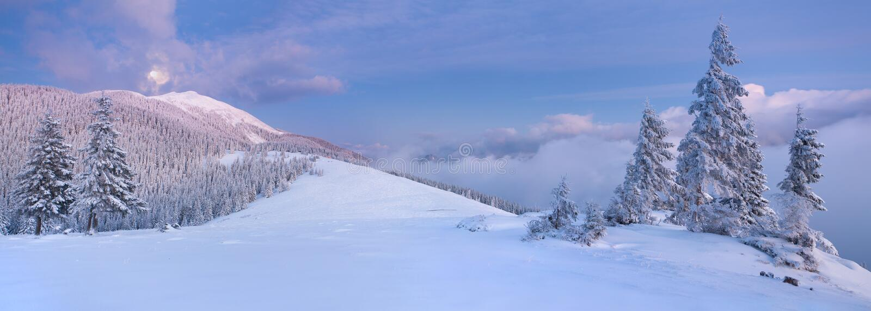 Panorama van het de winterlandschap stock afbeeldingen
