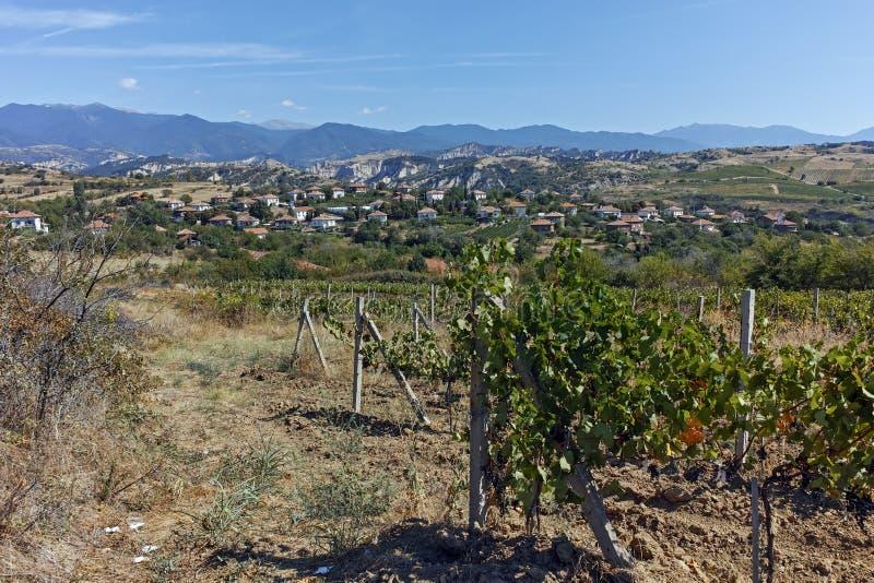 Panorama van het Dorp en de Wijnstokaanplantingen van Lozenitsa dichtbij Melnik-stad, Bulgarije stock afbeeldingen