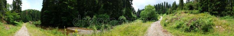 """Panorama van het kleine meer """"Jarevac"""" royalty-vrije stock foto"""