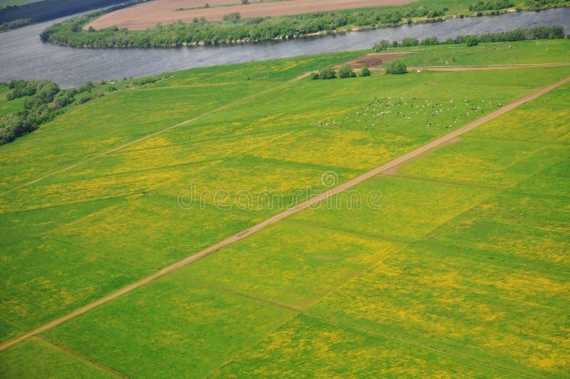 Panorama van het vliegtuig op het natuurlijke landschap: de rivier, de gebieden, de stad in de zomer stock fotografie