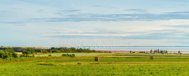 Panorama van hooibalen op een landbouwbedrijf langs de oceaan met Confede stock fotografie