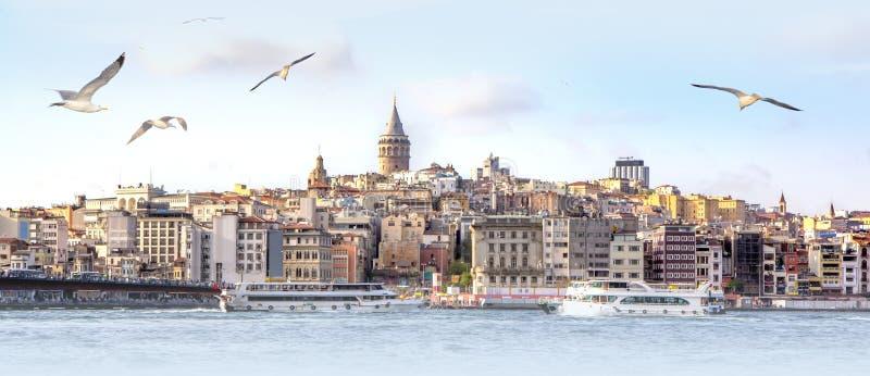 Panorama van Istanboel met Galata-Toren bij horizon en zeemeeuwen over het overzees, breed landschap van Gouden Hoorn, reisachter royalty-vrije stock afbeelding